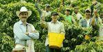 是时候,该了解一下哥伦比亚咖啡啦!